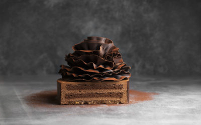 Chocolate cake Feuille D'automne